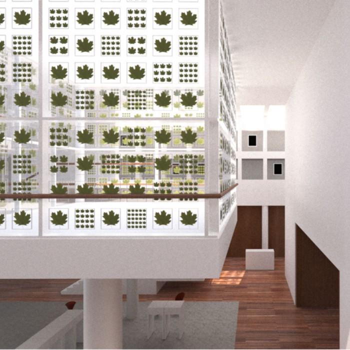 Ansicht Patio mit Herbarium